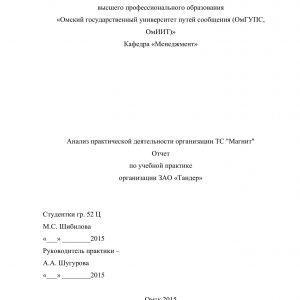 """Титульный лист отчета по учебной практике в магазине """"Магнит"""""""