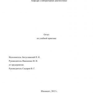 Титульный лист отчета по практике в котельной
