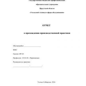 Титульный лист отчета по практике в парикмахерской