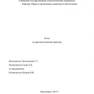 Титульный лист отчета по социальной практике